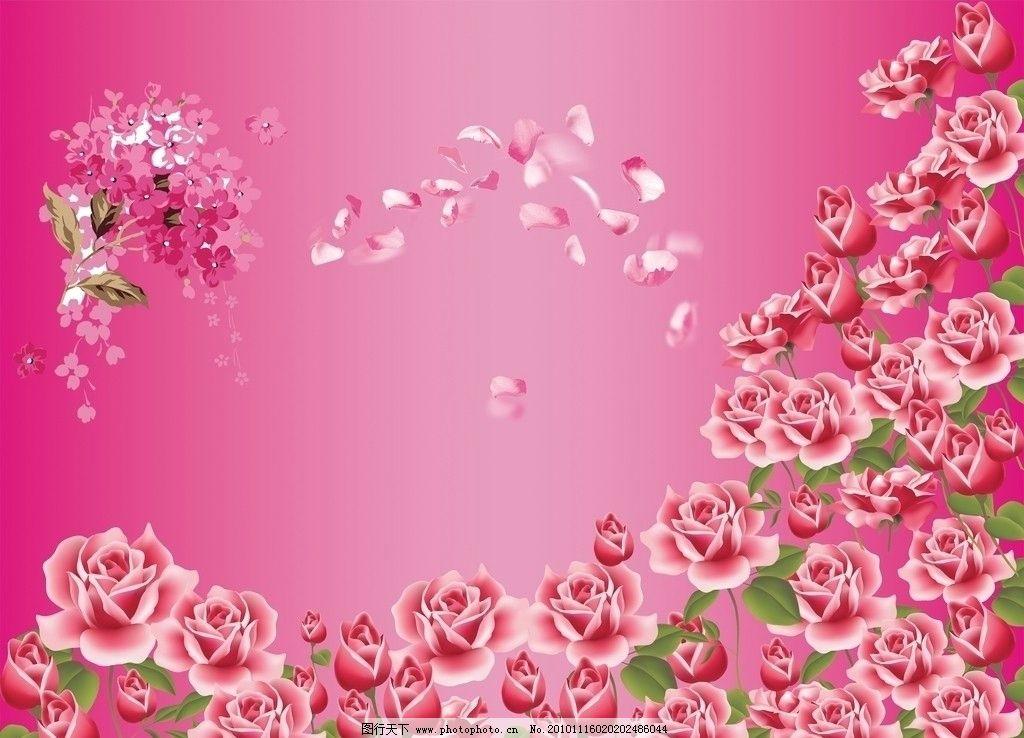 玫瑰花图片_背景底纹_底纹边框_图行天下图库