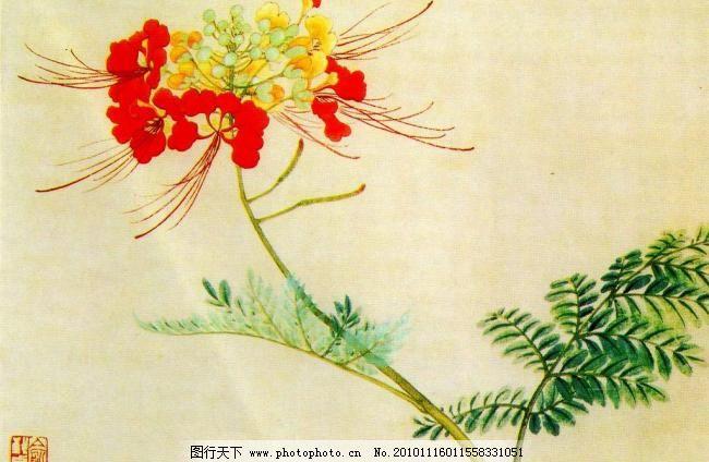 書法 鳳凰花設計素材 鳳凰花模板下載 鳳凰花 美術 繪畫 中國畫 工筆