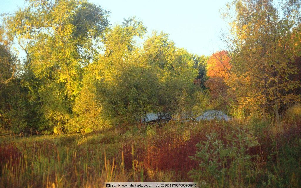 秋天的景色 秋天 山 树 群山 湖水 宁静 红叶 树林 树叶 山水风景