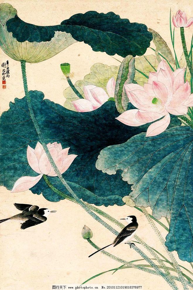 荷花小鸟 绘画 中国画 工笔重彩画 花鸟画 现代国画 植物 荷花 荷叶