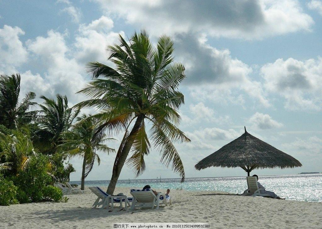海滩和椰子树图片