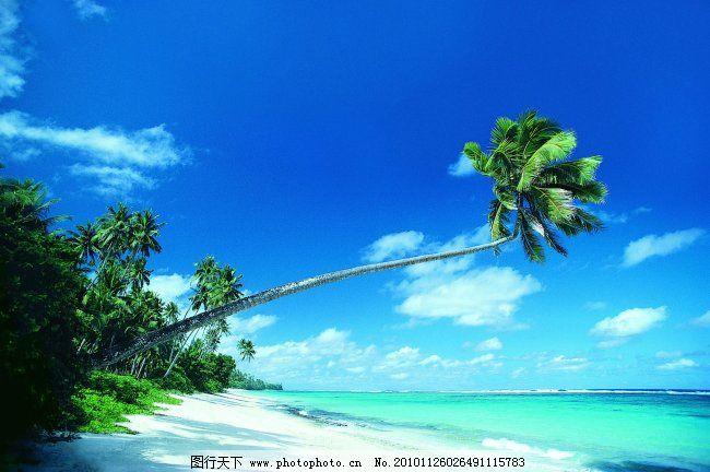 海 蓝天 海岛 海滩 椰树 白云
