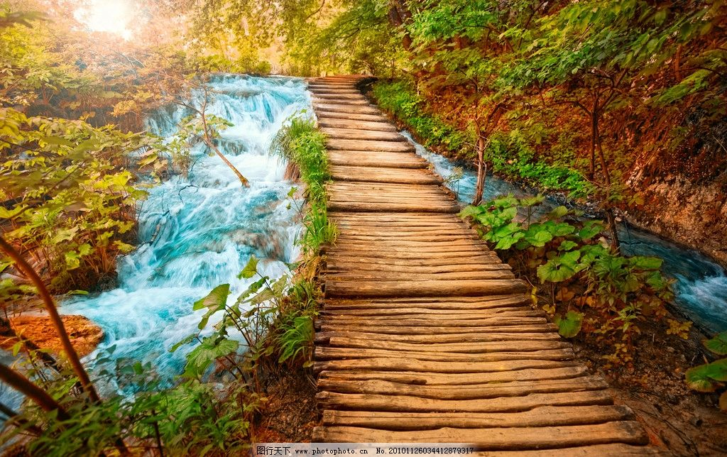 森林小桥流水高清图片