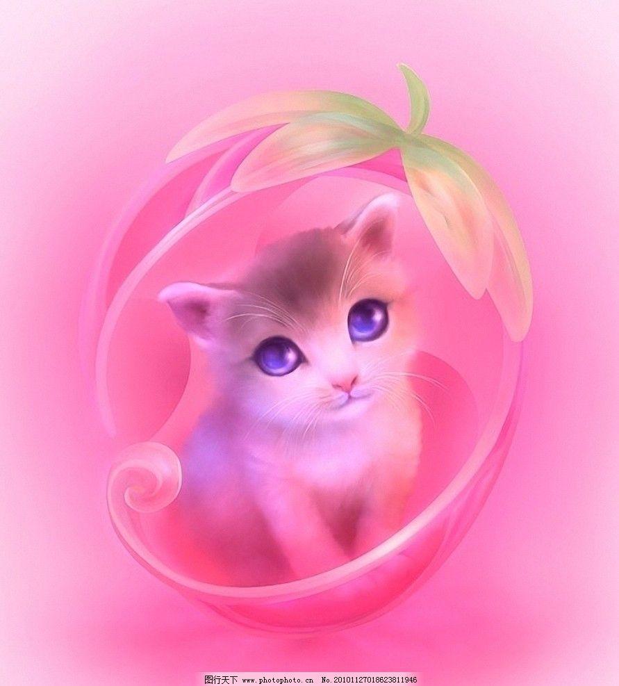 猫咪 可爱 猫 绘画 其他 动漫动画 设计 300dpi jpg