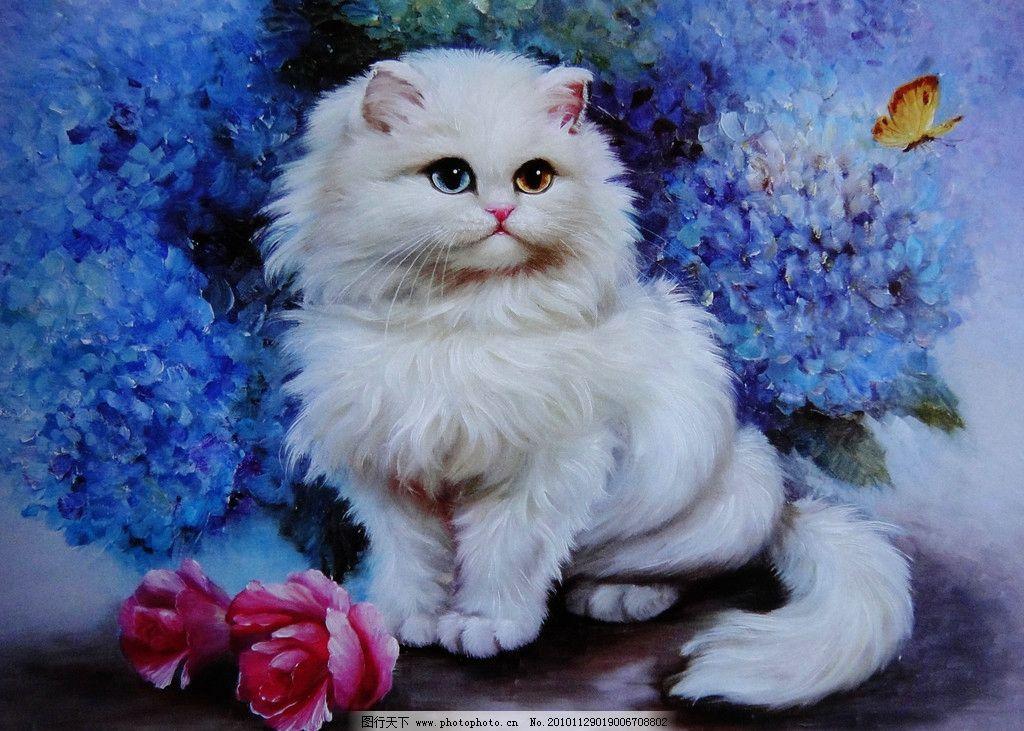小猫 猫 花猫 油画 写实 油画技法 可爱 白猫 玫瑰 花 蝴蝶 绘画书法