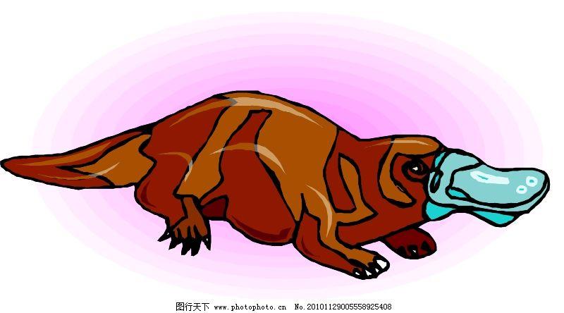 野生动物3851
