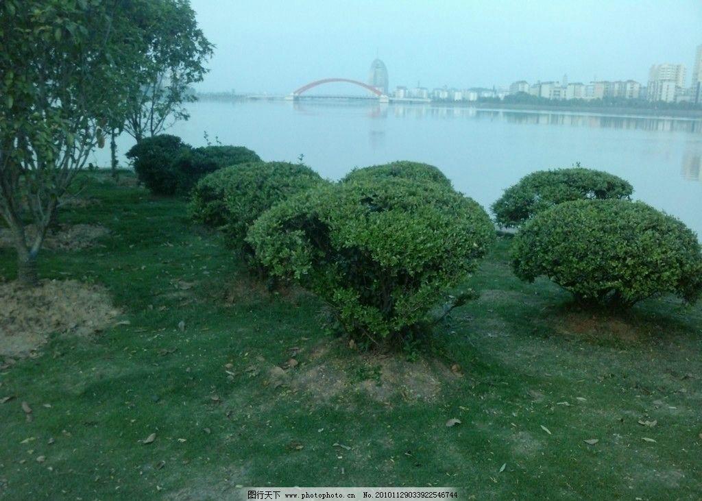 鄂州洋澜湖小游园风景 绿树 南浦虹桥 水天一色 楼房 倒影 草地