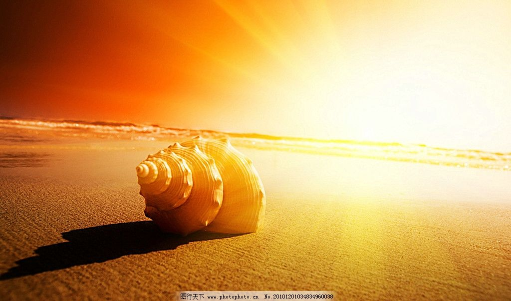 海螺 沙滩上的海螺 贝壳 海边 夕阳 天空 晚霞 霞光 晨光 光线