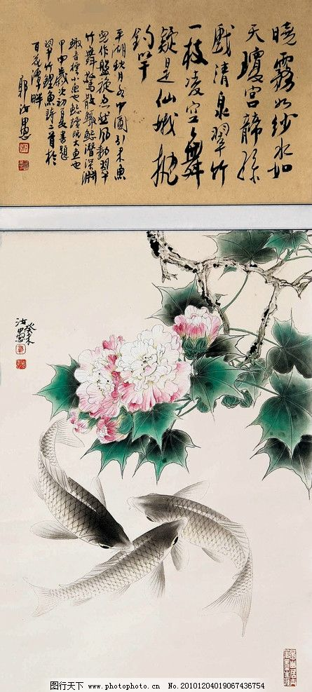 芙蓉鲤鱼 花朵 绿叶 鱼儿 花卉 书法 古典 国画 郭汝愚 工笔 花鸟