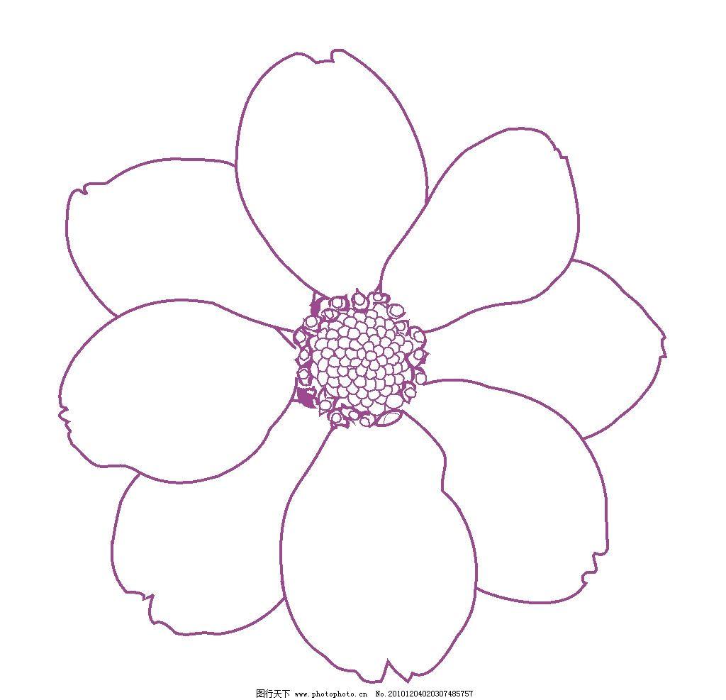 花卉素材 小花 花卉 线描 太阳花 花边花纹 底纹边框 设计 300dpi tif