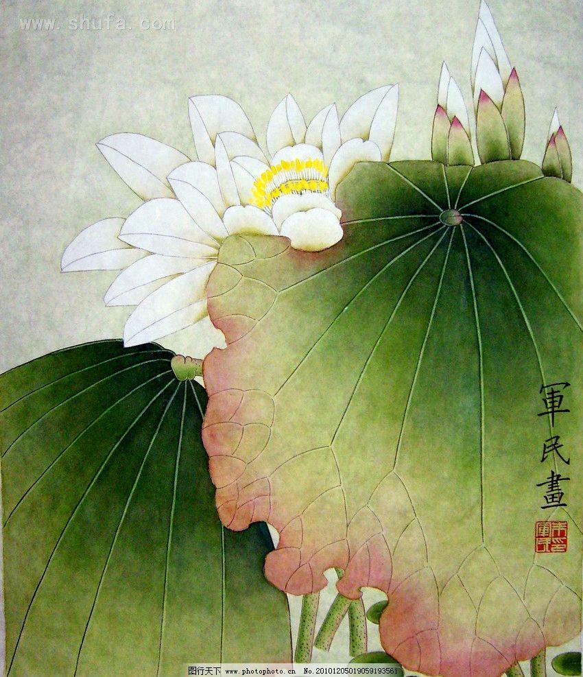 清荷 美术 绘画 中国画 彩墨画 花卉画 荷花画 荷叶 书法 印章