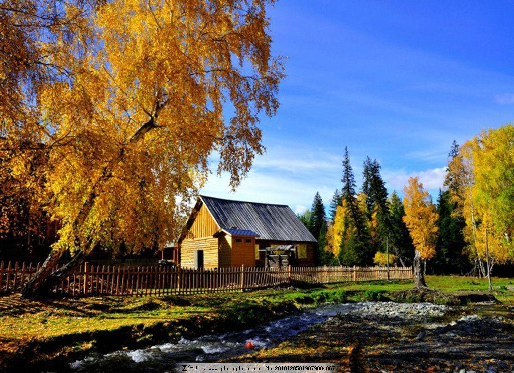 风景油画 树木 房子