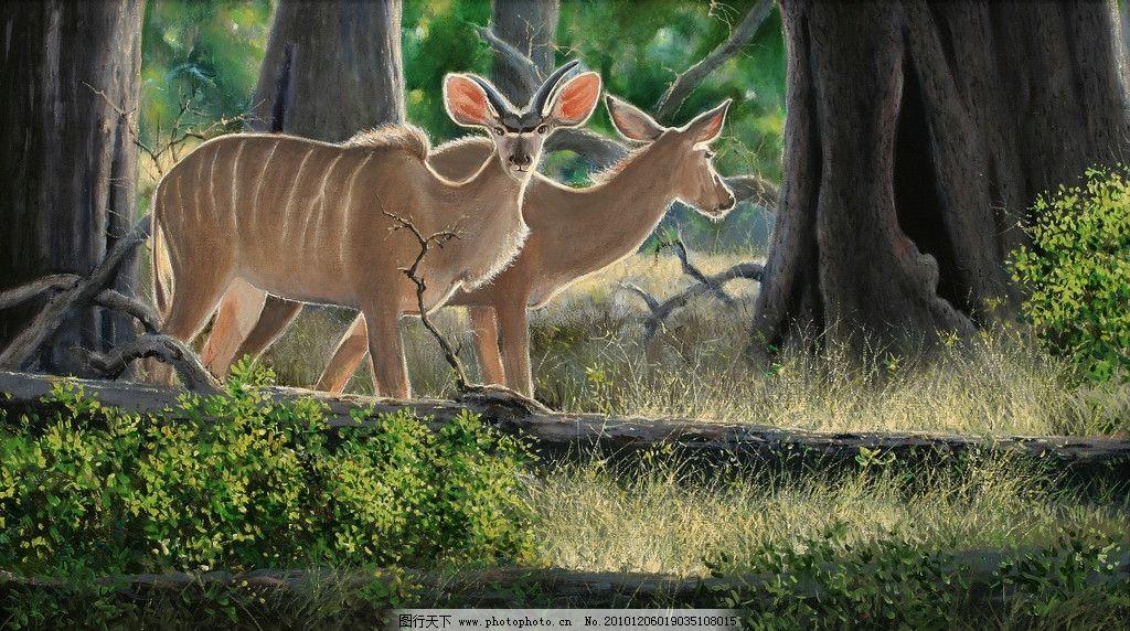油画森林中的羚羊 油画 羚羊 动物画 非洲 绘画书法 文化艺术 设计 72