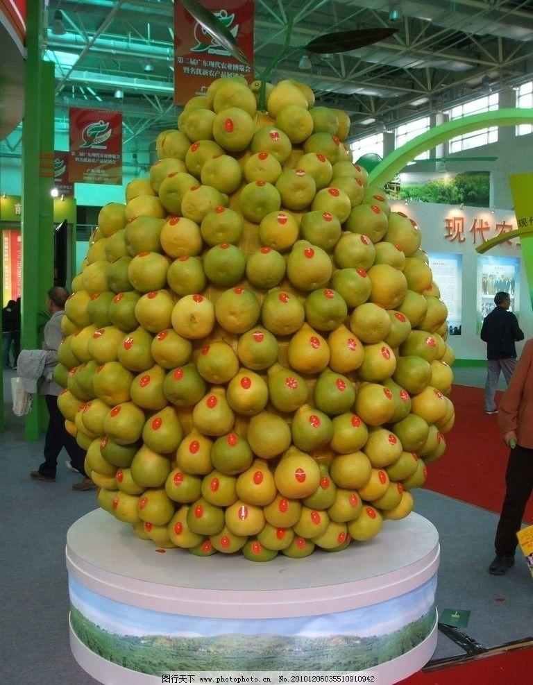 柚子球 柚子 柚子艺术 水果艺术 水果摆设 水果 生物世界 摄影 72dpi