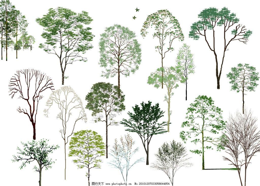 园林立面树 手绘 国画 立体树 立面图 psd 彩色 园林 植物 彩色平面树