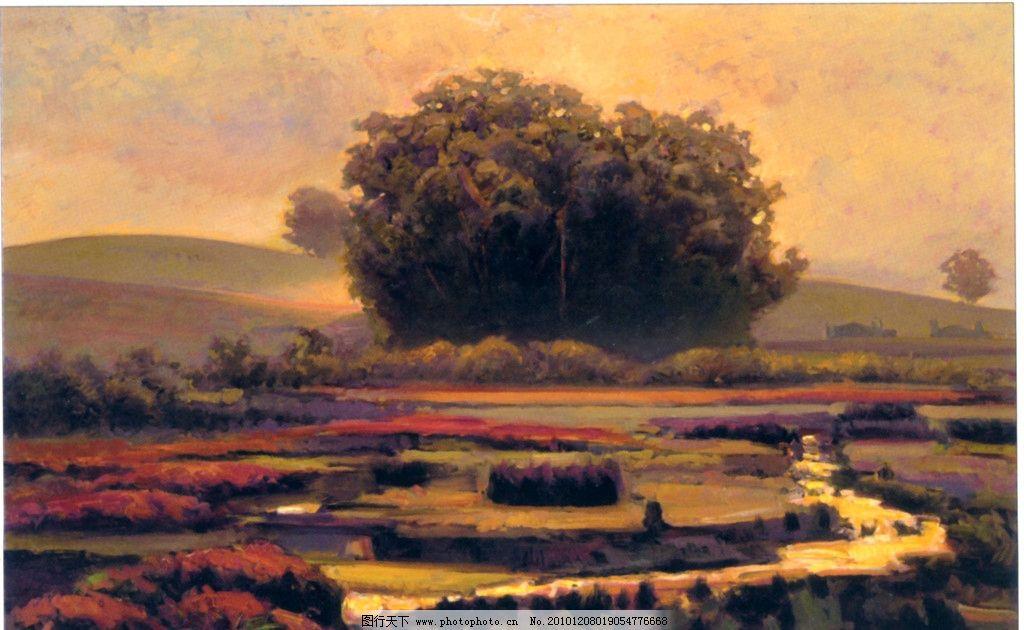 油画风景 抽象油画 山水油画 外国风景 秋色树林 园林风景 田园风光