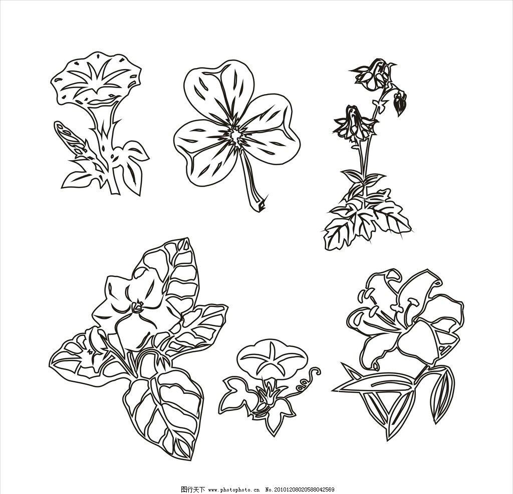 矢量植物图片