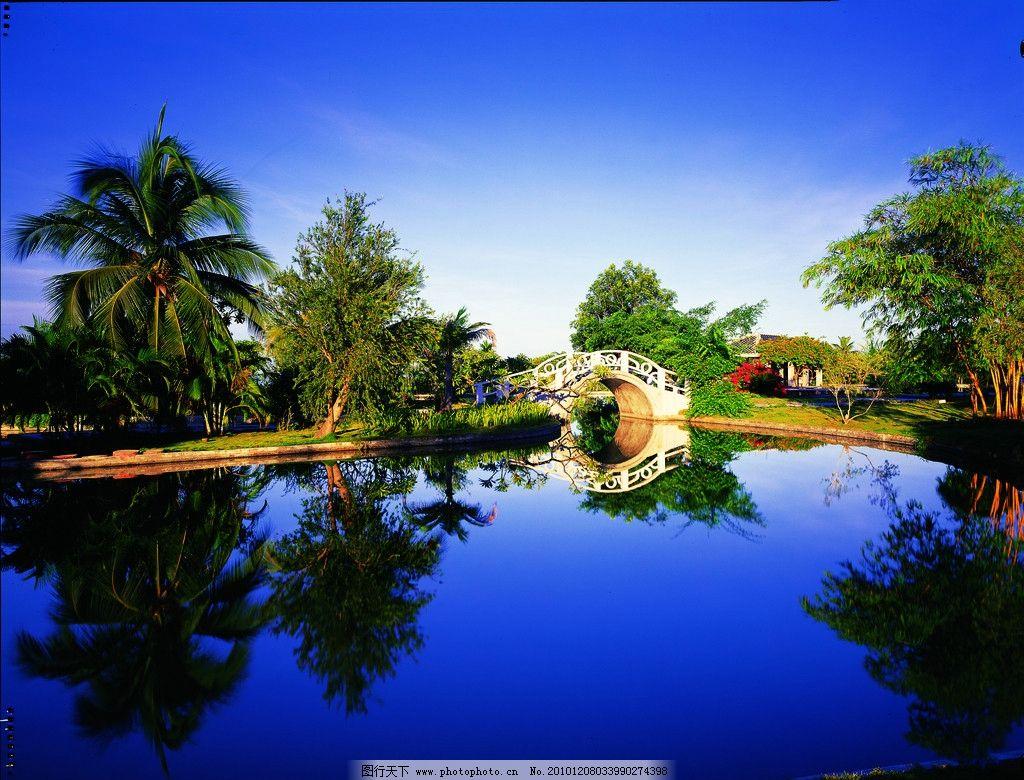 风景 大海 白云 蓝天 海边 树 夕阳 椰子树 阳光 公园 森林