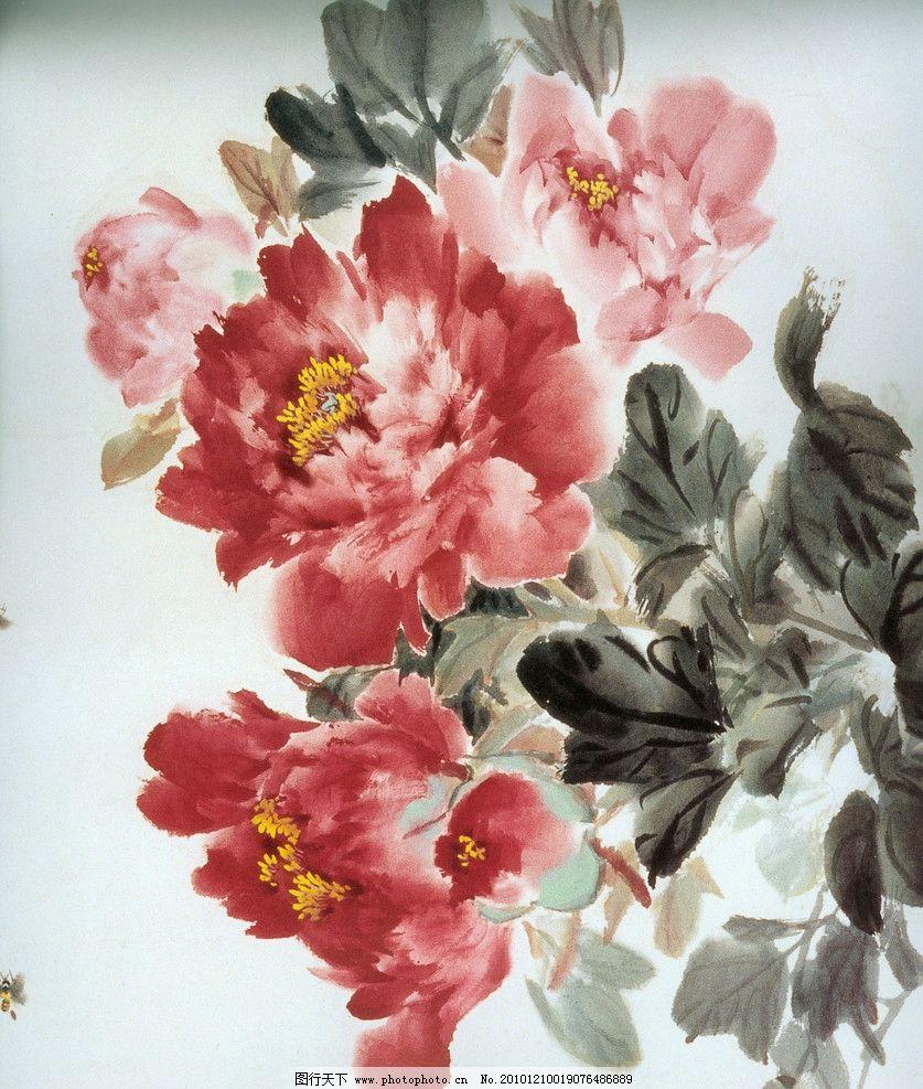 国画 牡丹 水墨画 水彩 手绘 绘画书法 文化艺术