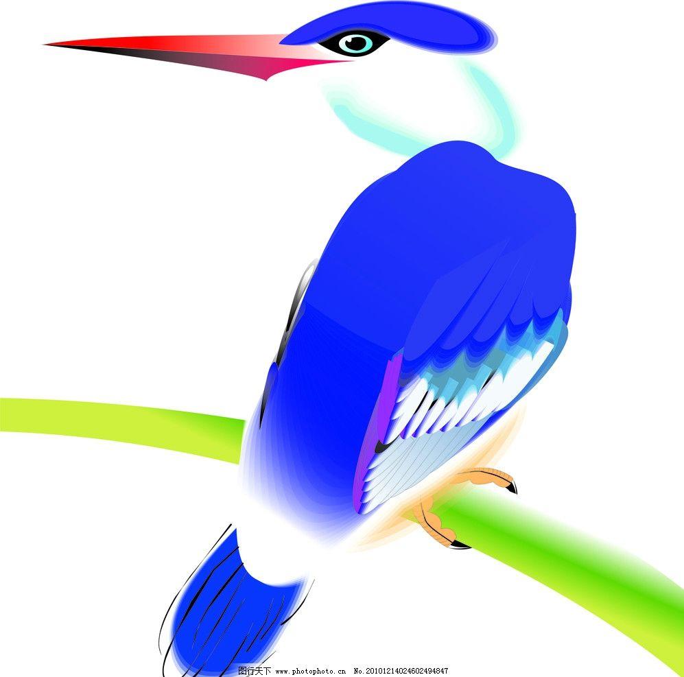 翠鸟矢量 翠鸟 小鸟 鸟类 动物 爪子 羽毛 树枝 尖嘴 喙 翅膀 飞翔