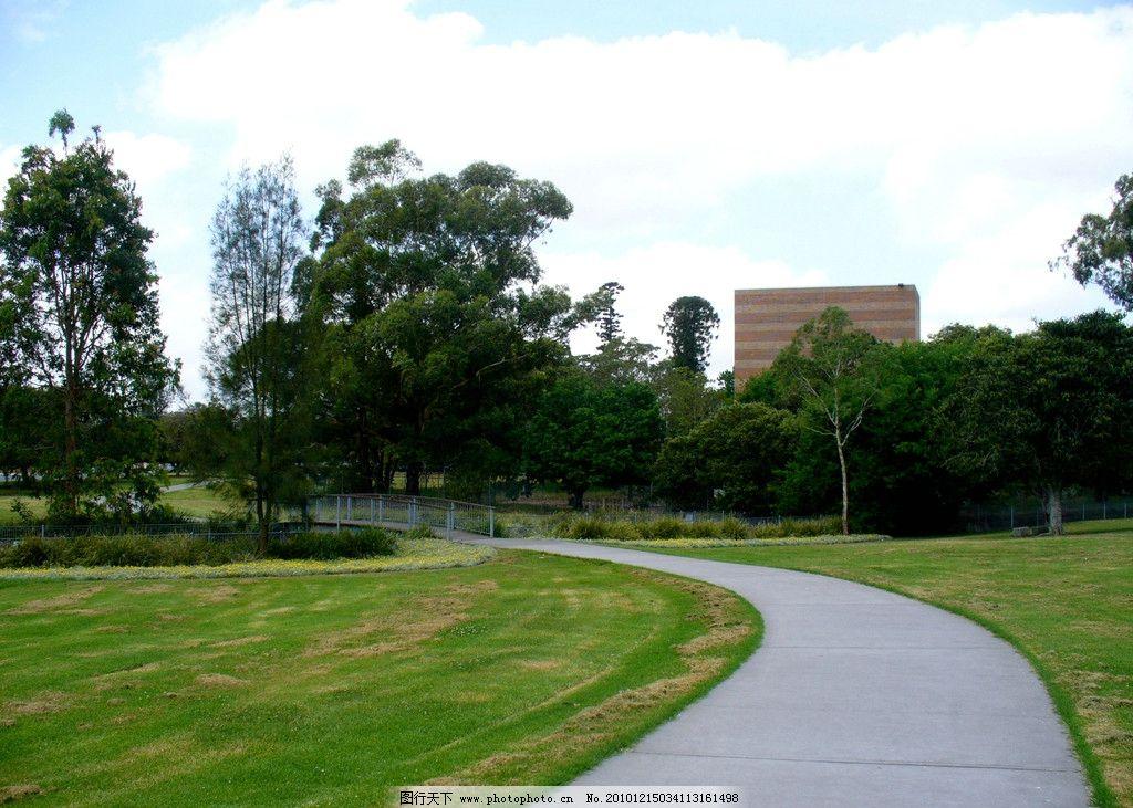 小路 幽静小路 幽径 草坪 绿树屏障 蓝天 白云 静谧 楼房 树木 自然