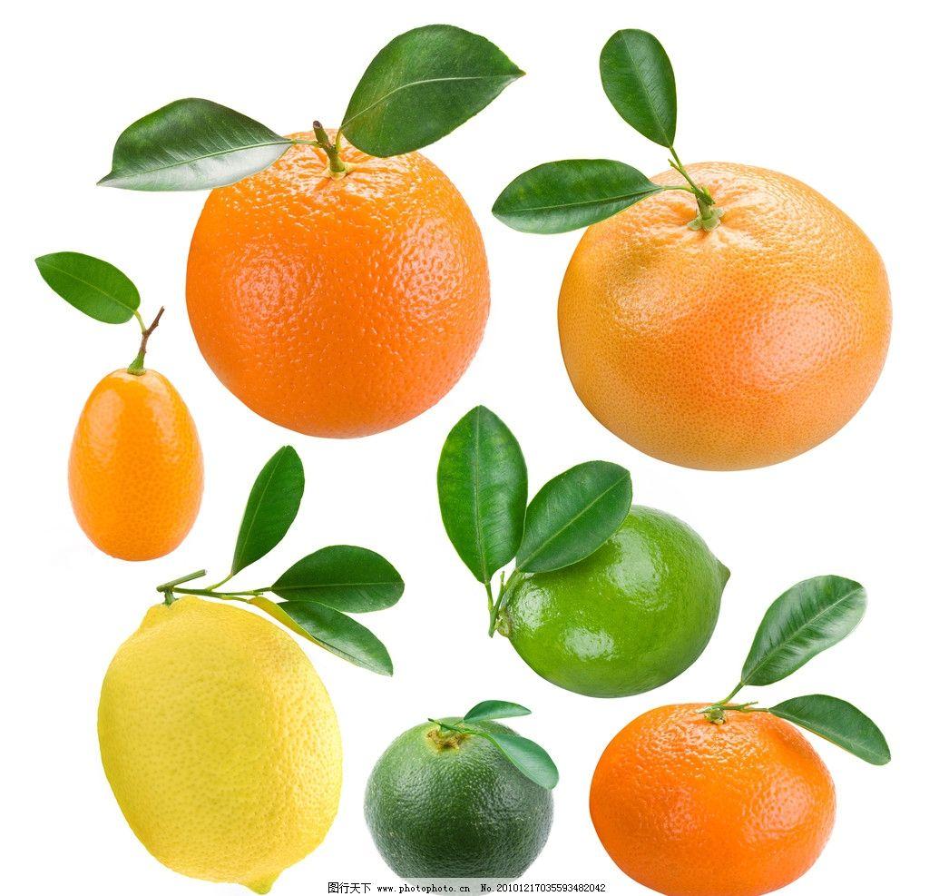 橙子图片,柠檬 桔子 水果图片素材 蔬菜 水果高清图片