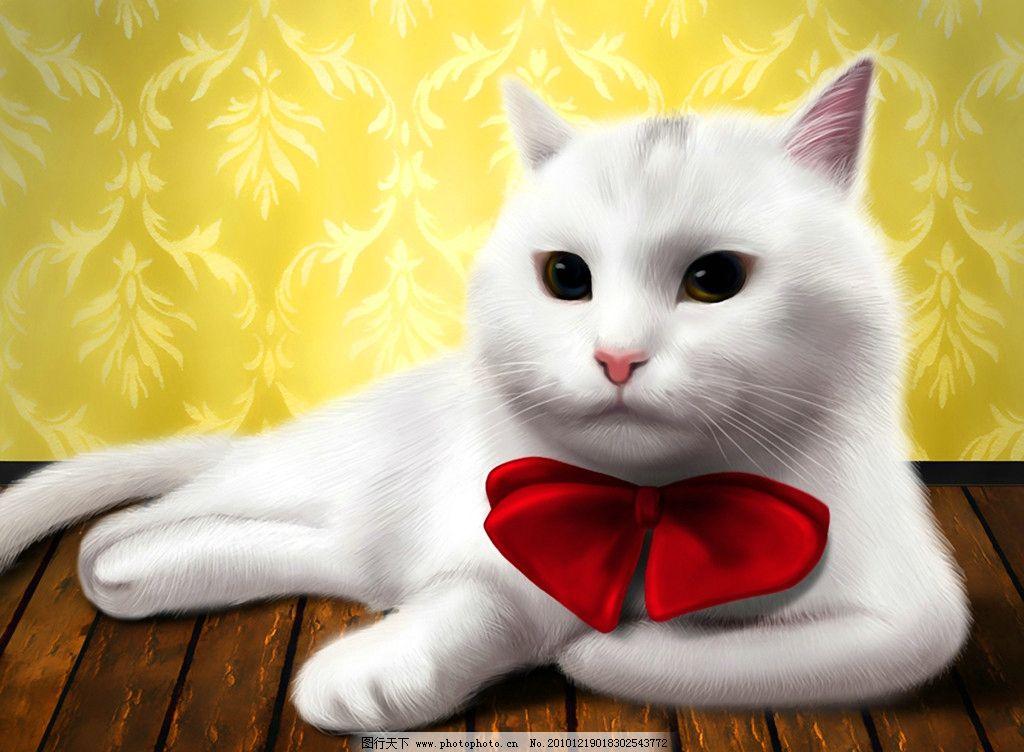 手绘 猫咪绅士图片