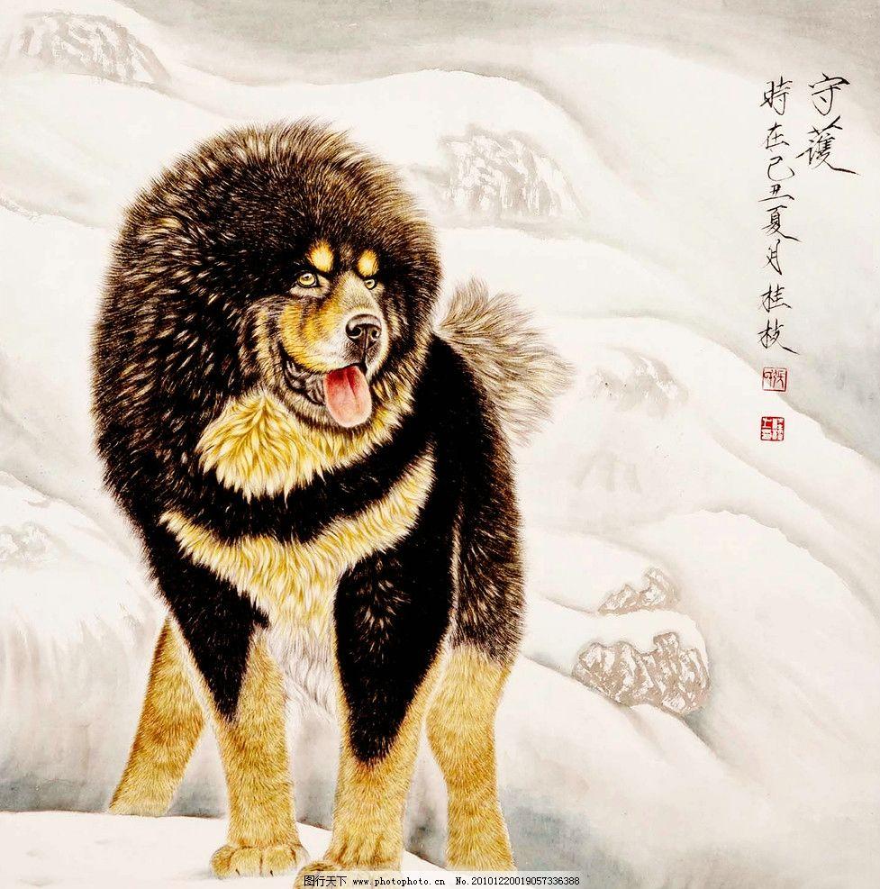 藏獒 绘画 中国画 彩墨画 工笔画 动物画 藏狗 凶猛 忠诚 高原 雪山