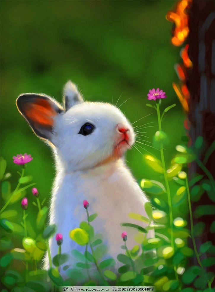 手绘 春天的兔子 春天 兔子 装饰画 无框画 油画 可爱 宠物 绘画书法