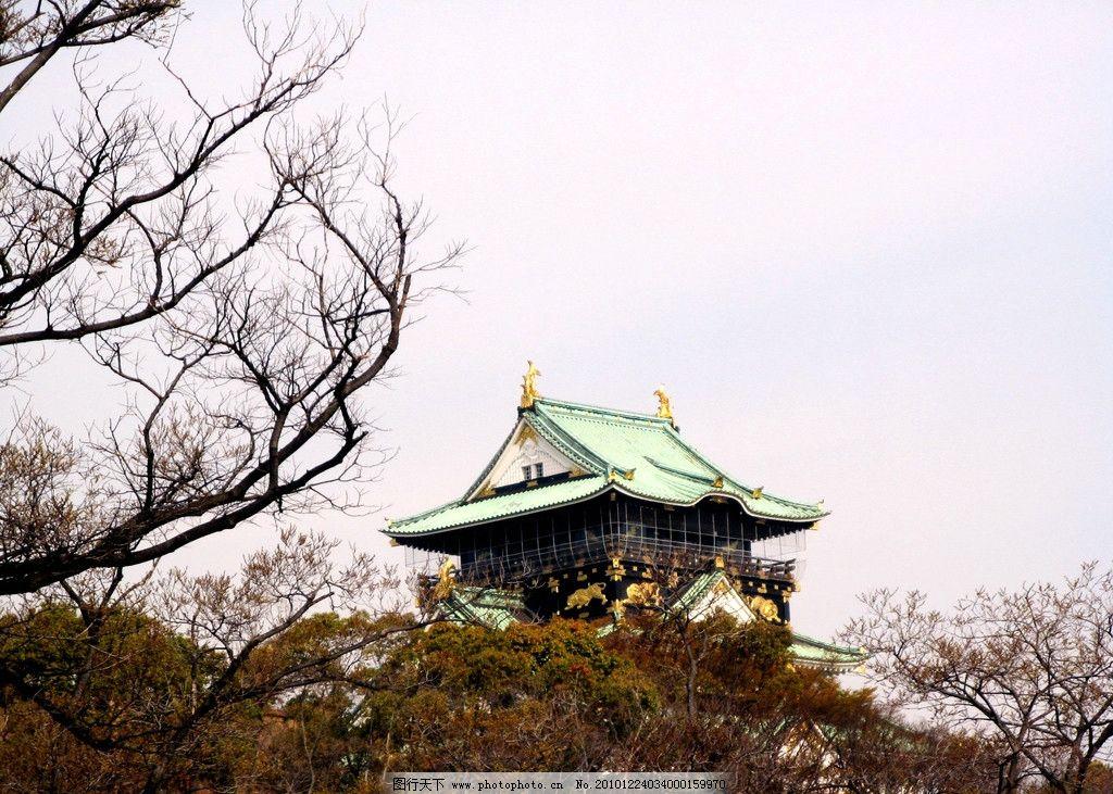 大阪城公园 风景 旅游 日本 大阪城风景 房屋 楼阁 树林 树木