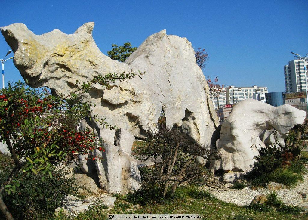 动物形状的观赏石 动物 形状 观赏石 大自然 自然风景 自然景观 摄影