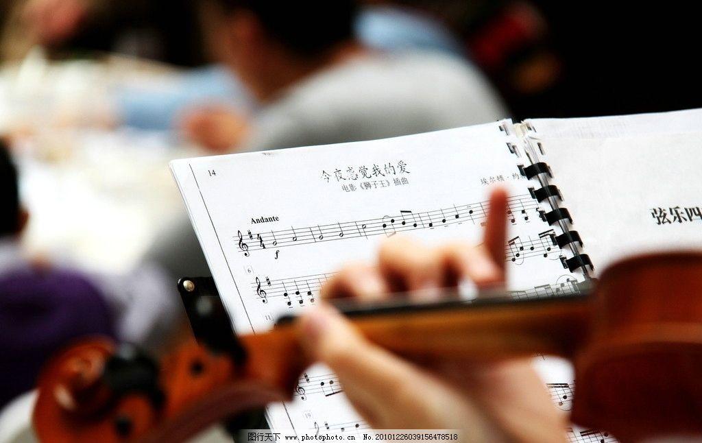 婚礼现场提琴琴谱 小提琴 交响乐演出 西式婚礼 西餐厅 乐谱 摄影图片