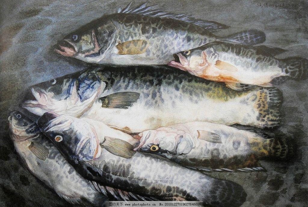 水彩画 水彩 鱼 静物 水彩静物 绘画书法 文化艺术 设计 100dpi jpg