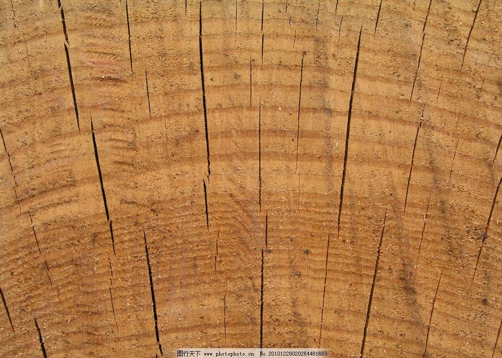 树根 木头材质 木纹 贴图材质 木头 老木头 三年轮 背景底纹 底纹边框