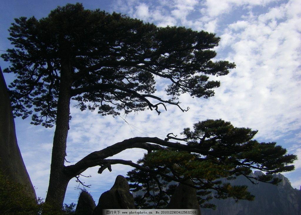 黄山迎客松 迎客松 奇石 天空 白云 山峦 自然风景 旅游摄影 摄影 72d